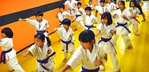 chrashi-karate
